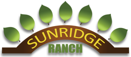 The Sunridge Ranch
